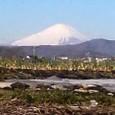 伊勢原より望む富士山
