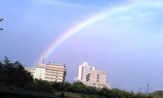 虹の光景です