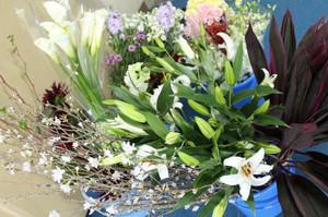 控室のお花たち-1