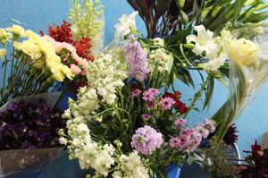 控室のお花達ー2